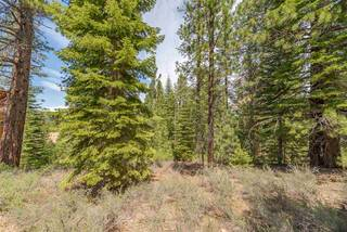 Listing Image 18 for 10336 Palisades Drive, Truckee, CA 96161