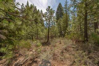 Listing Image 19 for 10336 Palisades Drive, Truckee, CA 96161