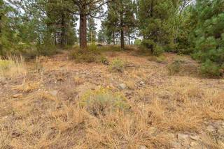 Listing Image 19 for 11809 River View Court, Truckee, CA 96161