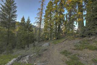 Listing Image 21 for 1499 Bear Mountain Court, Alpine Meadows, CA 96146
