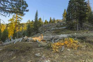 Listing Image 4 for 1499 Bear Mountain Court, Alpine Meadows, CA 96146