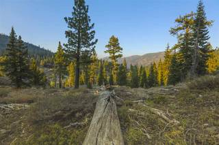 Listing Image 8 for 1499 Bear Mountain Court, Alpine Meadows, CA 96146