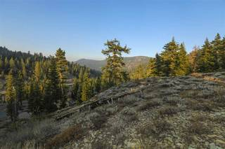 Listing Image 9 for 1499 Bear Mountain Court, Alpine Meadows, CA 96146