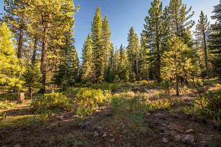 Listing Image 2 for 12228 Pete Alvertson Drive, Truckee, CA 96161