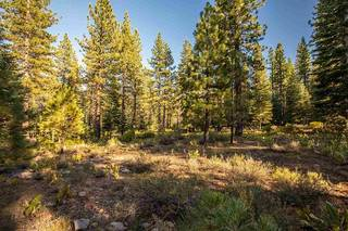 Listing Image 3 for 12228 Pete Alvertson Drive, Truckee, CA 96161