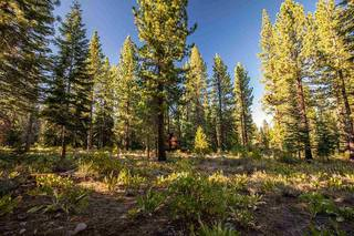 Listing Image 4 for 12228 Pete Alvertson Drive, Truckee, CA 96161