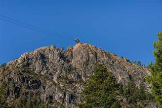 Listing Image 18 for 410 Squaw Peak Road, Olympic Valley, CA 96146-0000