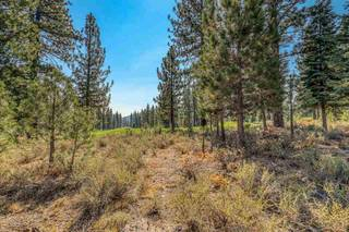 Listing Image 13 for 9344 Heartwood Drive, Truckee, CA 96161-0000