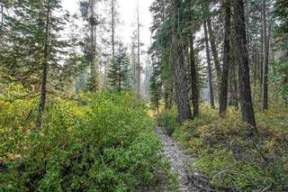 Listing Image 19 for 51462 Lola Montez Road, Norden, CA 95724