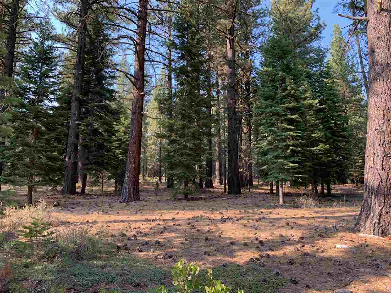 Image for 11060 Parkland Drive, Truckee, CA 96161
