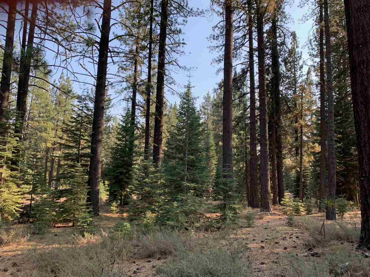 Image for 11727 Saddleback Drive, Truckee, CA 96161