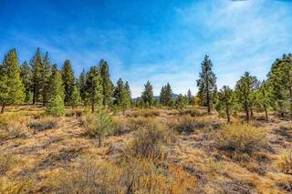 Listing Image 11 for 13185 Snowshoe Thompson, Truckee, CA 96161