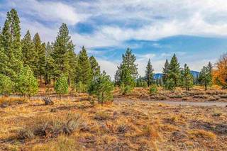 Listing Image 6 for 13185 Snowshoe Thompson, Truckee, CA 96161