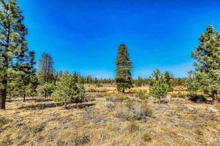 Listing Image 9 for 13185 Snowshoe Thompson, Truckee, CA 96161