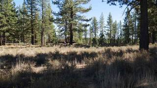 Listing Image 4 for 11199 Henness Pass Road, Truckee, CA 96161-0000