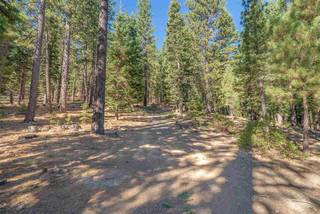 Listing Image 16 for 512 Wolf Tree, Truckee, CA 96161