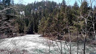 Listing Image 4 for 135 Alpine Meadows Road, Alpine Meadows, CA 96146-0000