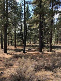 Listing Image 2 for 10541 Brickell Court, Truckee, CA 96161