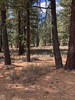Listing Image 5 for 10541 Brickell Court, Truckee, CA 96161