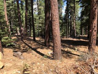 Listing Image 9 for Parcel B Kent Drive, Truckee, CA 96161
