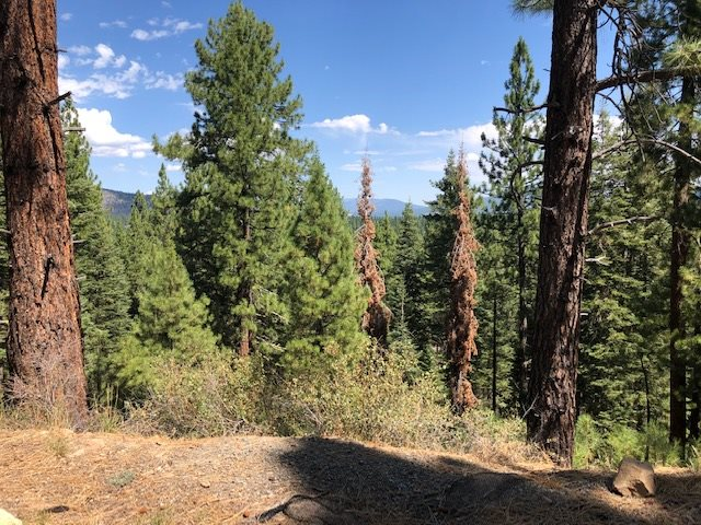 Image for Parcel C Kent Drive, Truckee, CA 96161