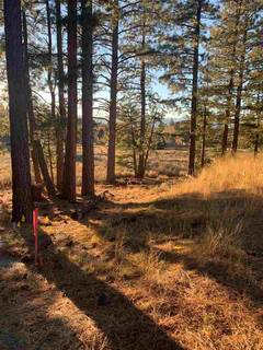 Listing Image 4 for 16397 Lance Drive, Truckee, CA 96161