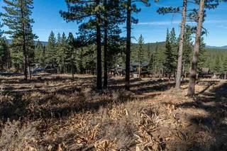 Listing Image 8 for 8256 Ehrman Drive, Truckee, CA 96161