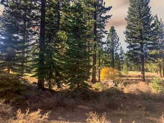Listing Image 4 for 9376 Heartwood Drive, Truckee, CA 96161