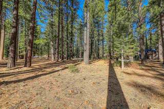 Listing Image 10 for 12418 Granite Drive, Truckee, CA 96161