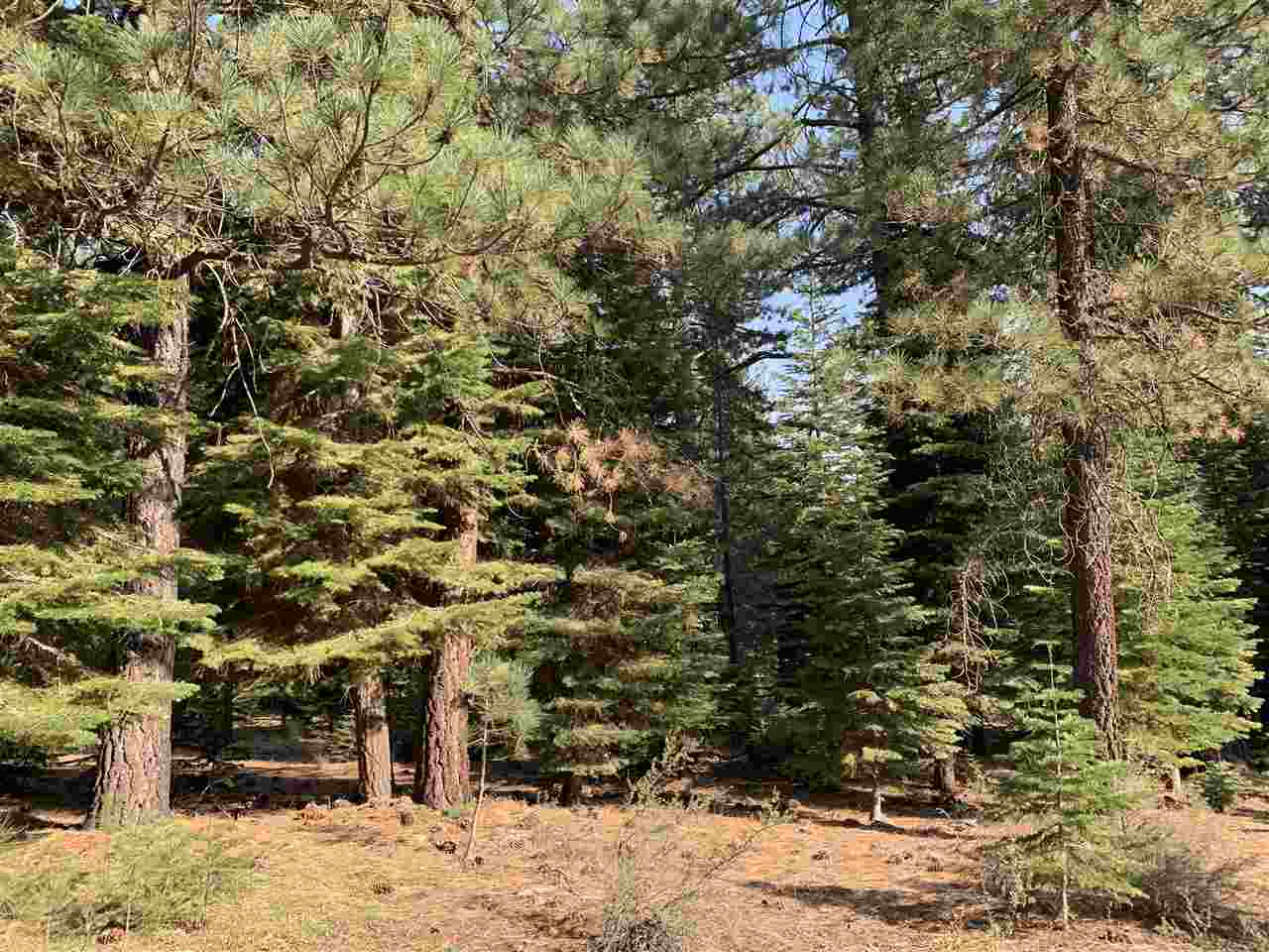 Image for 11151 Parkland Drive, Truckee, CA 96161