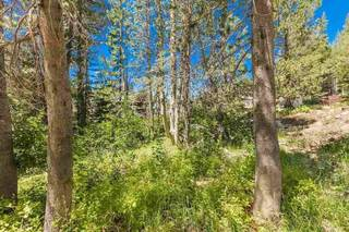Listing Image 12 for 21685 Donner Pass Road, Soda Springs, CA 95728