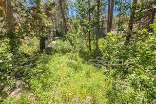 Listing Image 15 for 21685 Donner Pass Road, Soda Springs, CA 95728