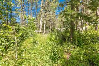 Listing Image 16 for 21685 Donner Pass Road, Soda Springs, CA 95728