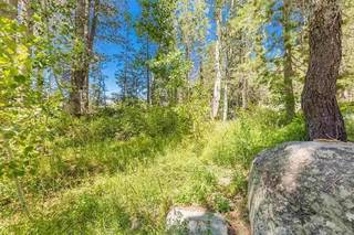 Listing Image 19 for 21685 Donner Pass Road, Soda Springs, CA 95728