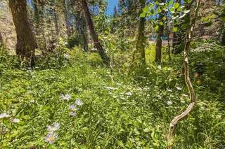 Listing Image 20 for 21685 Donner Pass Road, Soda Springs, CA 95728