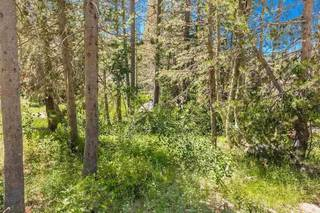 Listing Image 21 for 21685 Donner Pass Road, Soda Springs, CA 95728