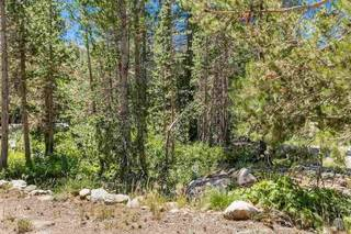Listing Image 8 for 21685 Donner Pass Road, Soda Springs, CA 95728