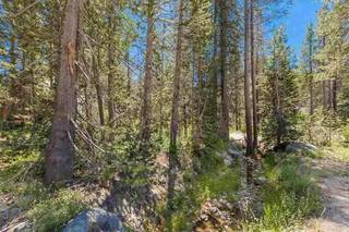 Listing Image 10 for 21685 Donner Pass Road, Soda Springs, CA 95728