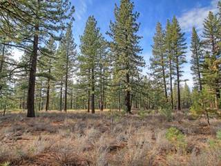 Listing Image 9 for 12666 Caleb Drive, Truckee, CA 96161