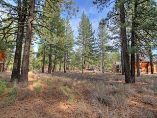 Listing Image 10 for 12666 Caleb Drive, Truckee, CA 96161