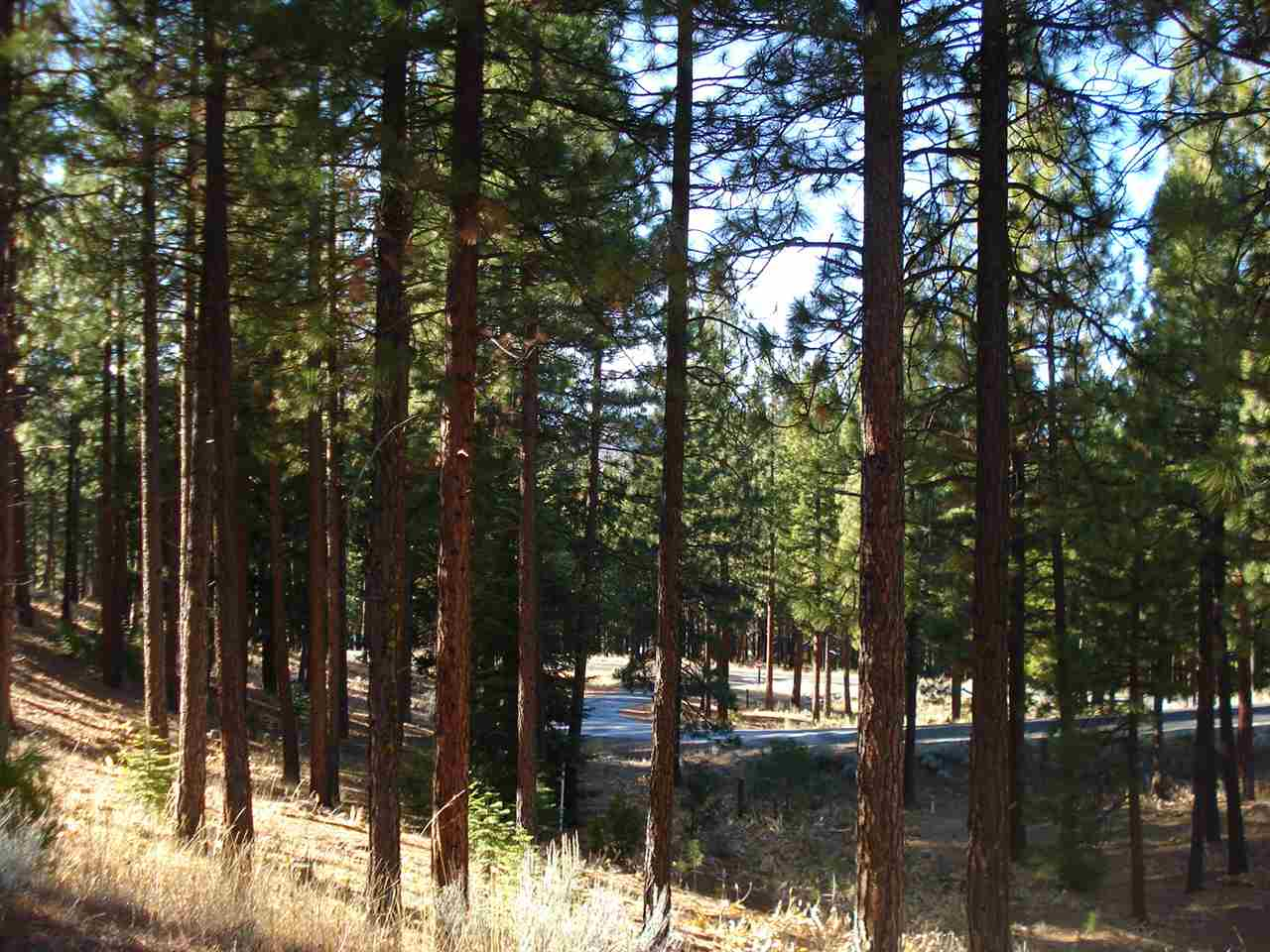 Image for 59 Whisker Brush Way, Portola, CA 96122
