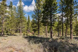 Listing Image 3 for 8125 Villandry Drive, Truckee, CA 96161