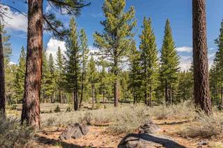 Listing Image 5 for 8125 Villandry Drive, Truckee, CA 96161