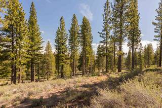 Listing Image 6 for 8125 Villandry Drive, Truckee, CA 96161