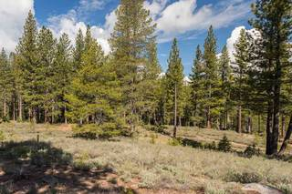 Listing Image 7 for 8125 Villandry Drive, Truckee, CA 96161
