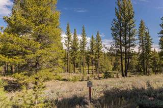 Listing Image 8 for 8125 Villandry Drive, Truckee, CA 96161