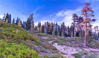 Listing Image 6 for 58501 Old Donner Summit Road, Norden, CA 95724