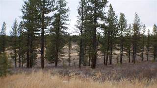 Listing Image 11 for 10700 Winchester Court, Truckee, CA 96161