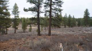 Listing Image 14 for 10700 Winchester Court, Truckee, CA 96161