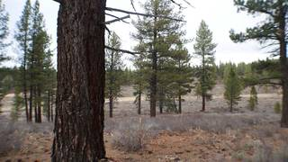 Listing Image 16 for 10700 Winchester Court, Truckee, CA 96161